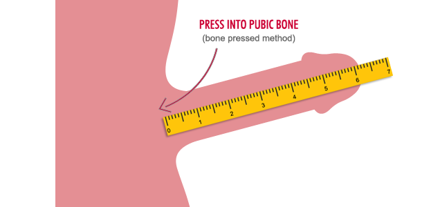 how to measure penile length correctly